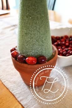 cranberrystep3